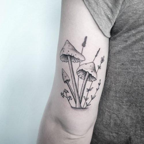 Dotwork Pilze mushrooms tattoo tattoostudio piixs konstanz bodensee