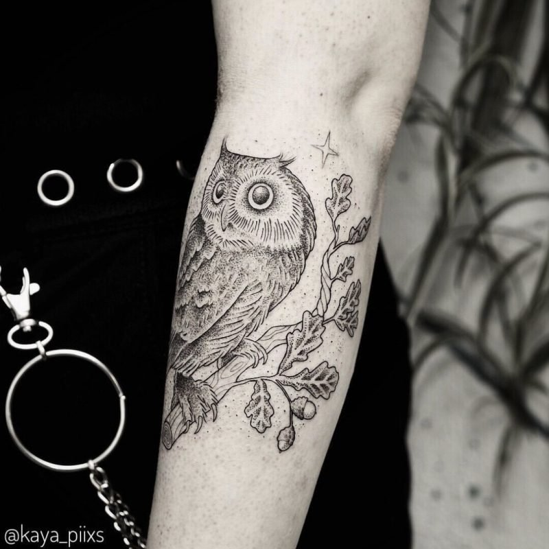 dotwork tattoo owl oak eule eiche konstanz tattoostudio PIIXS kaya piixs tattoo zürich bodensee lake of constanze